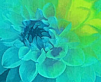 Petals background.digital painting Royalty Free Stock Images