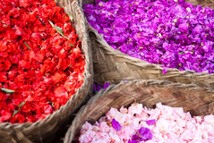 Petals baskets Royalty Free Stock Photos