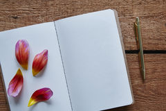 Petals of bloom on blank notebook.  Stock Image