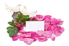 Petals, figurine and blank card Stock Image