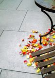 Petals on the floor Royalty Free Stock Photography