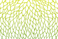 Petals flower pattern design green yellow gradients color illust Stock Image