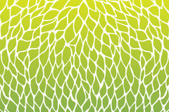 Petals flower pattern design green yellow gradients color Royalty Free Stock Image