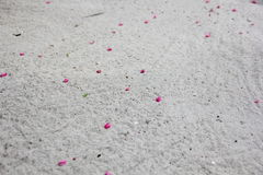 Petals from flowers on white sand Royalty Free Stock Photography