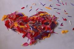 Petals in heart shape Royalty Free Stock Photos
