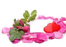 Petals, hearts and blank card Royalty Free Stock Image