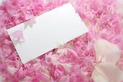 Petals invitation Stock Photos