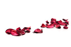 Petals of love Stock Photo