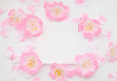 Petals and message card Petals and message card Royalty Free Stock Image
