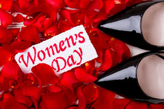 Petals near Women`s Day card. Royalty Free Stock Images