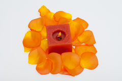 Petals of the orange-rose around the aromatic candle Stock Photos