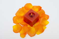 Petals of the orange-rose around the aromatic candle Royalty Free Stock Photo