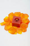 Petals of the orange-rose around the aromatic candle Stock Photography