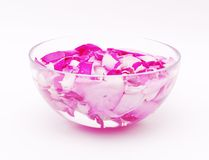 Petals of pink roses in glass bowl with water Royalty Free Stock Photo