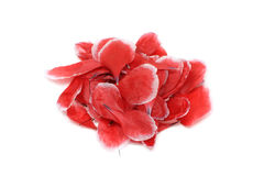 Petals of red poppy Stock Images