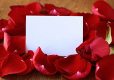 Petals of a red rose and a card Royalty Free Stock Photo