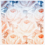 Petals of roses. Abstract fantasy, can be used designers for creation and processing of different images Royalty Free Stock Photos