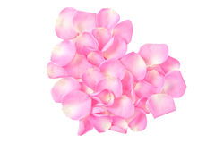 Petals of roses  in the shape of heart. Delicate petals of pink roses folded in the shape of heart Stock Photo