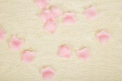Petals of roses and towel. Background Royalty Free Stock Image