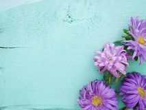 Petals scattered on the table.  Bright colors. Petals scattered on the table Stock Images
