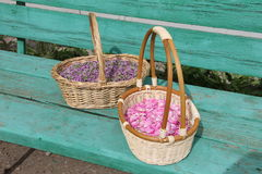 Petals Siberian plant thyme and wild rose in wicker baskets. Pink petals Siberian plant thyme and wild rose in wicker baskets Royalty Free Stock Photos