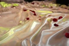 Petals on silk. stock photography