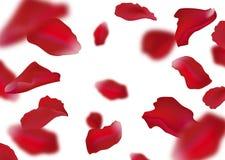 petals steg stock illustrationer