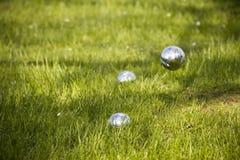petanque травы шара Стоковые Изображения