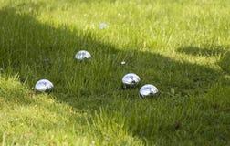 petanque травы шаров Стоковое Фото