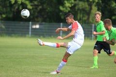 Petar Musa - Slavia Prague Stock Photos