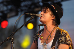 Pete Doherty Fotografia Stock