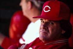 Pete Rose Cincinnati Reds Immagine Stock Libera da Diritti