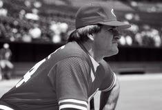Pete Rose Cincinnati Reds. Pete Rose of the Cincinnati Reds during batting practice to hit royalty free stock image