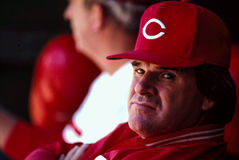 Pete Rose Cincinnati Reds Royalty Free Stock Image