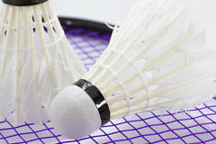 Peteca branca para o badminton Fotografia de Stock
