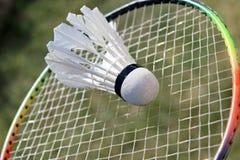 Petecas do badminton na raquete Fotografia de Stock