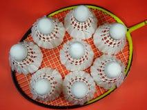 Petecas plásticas vermelhas na raquete de badminton Fotografia de Stock Royalty Free