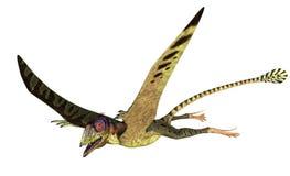 peteinosaurus летания иллюстрация вектора