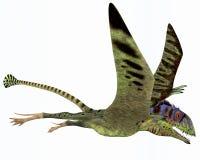 Peteinosaurus Dinosaur Stock Photo