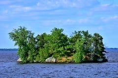 Petenwell Jeziorna wyspa - Wisconsin Obrazy Stock