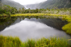 Peterâs pöl i Franz Josef (New Zealand) royaltyfri foto