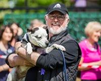 Peter Egan che giudica un'esposizione canina sulla brughiera di Hamstead a Londra immagini stock libere da diritti