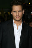 Peter Facinelli Royalty Free Stock Photo