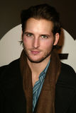 Peter Facinelli Royalty Free Stock Photos