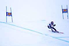Peter Fill - Fis World Cup Stock Images