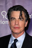 Peter Gallagher Stock Photography
