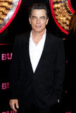 Peter Gallagher. At the Los Angeles premiere of 'Burlesque' held at the Grauman's Chinese Theatre in Hollywood on November 15, 2010 Royalty Free Stock Photography