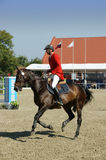 Peter Geerink on Vythagoras - show jumping Royalty Free Stock Photos