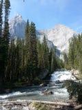 Peter Lougheed Provincial Park Alberta Imagen de archivo libre de regalías