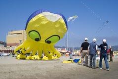 Peter Lynn-octopus Stock Photo